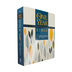 NLT One Year Chronological Creative Expressions Bible, Paperback