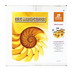 BJU Press, Pre-Algebra Complete Subject Kit, 2nd Edition, Grade 8