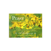 Renewing Minds, Prayer Do Not Be Anxious, Christian Classroom Poster, 19 x 13  Inches