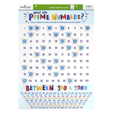 Renewing Minds, Classroom Prime Numbers Chart, 17 x 22 Inches, Multi-Colored, 1 Each