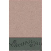 KJV Study Bible for Girls, Imitation Leather, Pink Pearl and Gray Vine Design