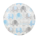 Brother Sister Design Studio, Welcome Little One Large Paper Plates, 10 1/2 Inches, Pack of 10