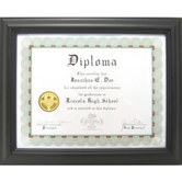 Green Tree Gallery, Classic Document Frame, Black, 13 1/8 x 10 3/4 inches