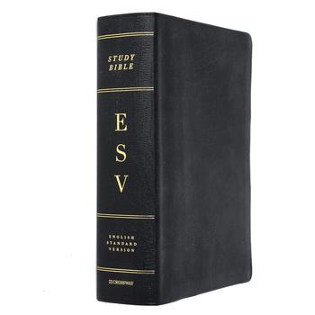 ESV Study Bible, Large Print, Genuine Leather, Black, Thumb Indexed