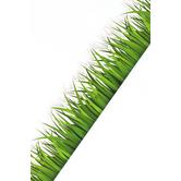 Renewing Minds, Die-Cut Border Trim, 38 Feet, Green Grass