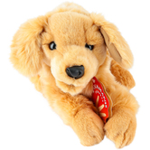 Folkmanis, Golden Retriever Puppy Hand Puppet, 17 x 7 x 12 inches