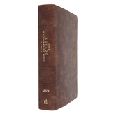NIV Lucado Encouraging Word Bible, Imitation Leather, Multiple Colors Available