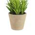 Artificial Leafy Succulent in Terra Cotta Pot, Plastic, Green, 4 1/4 x 5 1/4 inches