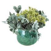 Artificial Marsh Pennywort in Pot, Plastic & Ceramic, Green, 11 x 9 inches