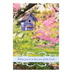 DaySpring, Spring Time Get Well Cards, 12 Cards