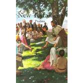 KJV Economy Childrens New Testament with Psalms, Paperback