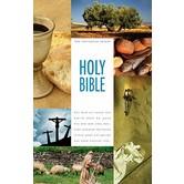 NIV Textbook Bible, Hardcover