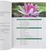 Master Books, God's Design for Life Student Book, Paperback, Grades 3-8