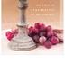 Salt & Light, Holy Communion Church Bulletins, 8 1/2 x 11 inches Flat, 100 Count