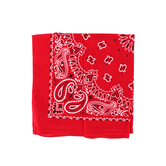 Fashion Bandana, Paisley Print, Cotton, Multiple Colors Available, 22 x 22 Inches, 1 Piece