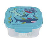Stephen Joseph, Shark Snack Box with Ice Pack, Plastic, 6 x 6 x 2 1/2 inches