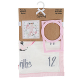 A.D. Sutton & Sons, Baby Milestone Blanket, 30 x 30 Inches, 3 Pieces