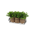 Artificial Boxwood Trio in Wire Basket, 3 Plants, 9 1/2 x 4 inches