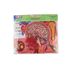 Little Folk Visuals, Human Body and Anatomy Felt Wonders Set, 34 Inches, 34 Pieces, Ages 3 and up