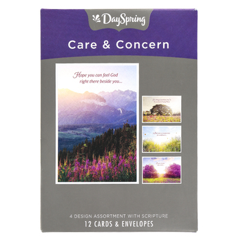 DaySpring, Care & Concern Trying Times Boxed Cards, 12 Cards with Envelopes