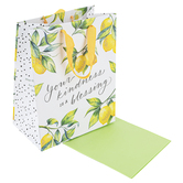 DaySpring, Your Kindness is a Blessing Medium Gift Bag, 9 3/4 x 7 3/4 Inches