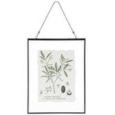 Olive Tree Plant Print Framed Wall Decor, Black, 13 3/4 x 10 3/8 x 5/16 inches