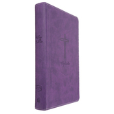 KJV Deluxe Gift Bible, Imitation Leather, Multiple Colors Available