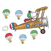 Peanuts Bulletin Board Set - Flying Ace