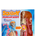 SmartLab Toys, Squishy Human Body STEAM Kit, 29 Pieces, 10 x 3 x 13.5 Inches, Grades 3 and up
