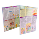 BarCharts Inc., Biology Laminated Quick Study Guide, 8.5 x 11 Inches, 6 Pages