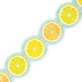 Teacher Created Resources, Lemon Zest Citrus Slices Die-Cut Border Trim, Trimmer, Multi-Colored, 35 Feet