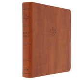 AMP Holy Bible XL Edition, Imitation Leather, Brown