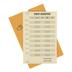 A Simple Plan,  Intermediate & High School Report Card, Vintage