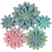 Succulent Plant Cluster Wall Art, Metal, Green and Pink, 13 3/8 x 13 x 1 1/2 inches