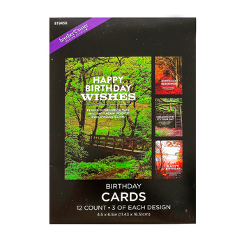 Brother Sister Design Studio, Forest Scenes Inspirational Birthday Cards, 12 count