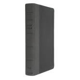 NIV Personal Size Bible, Large Print, Imitation Leather, Multiple Colors Available