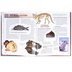 Master Books, The Geology Book, Hardcover, Grades 3-12