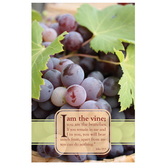 Salt & Light, I Am The Vine Church Bulletins, 8 1/2 x 11 inches Flat, 100 Count