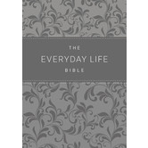 AMP Everyday Life Bible, Imitation Leather, Multiple Colors Available