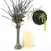 Round Air Plant Wall Decor, Metal and Plastic, 7 1/4 x 7 1/4 inches