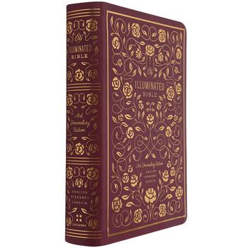 ESV Illuminated Journaling Bible, Hardcover, Burgundy