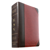 ESV Study Bible, Duo-Tone, Multiple Colors Available
