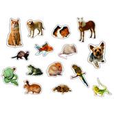 Carson Dellosa, Pets: Photographic Stickers, Multi-Colored, Pack of 90