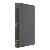 KJV Ultrathin Reference Bible, Imitation Leather, Black