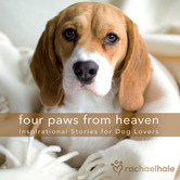 Four Paws from Heaven Gift Edition: Inspirational Stories for Dog Lovers, by Various Authors
