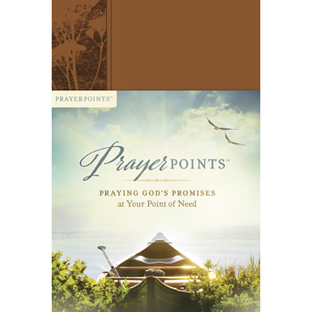 PrayerPoints: Praying God's Promises at Your Point of Need, by Ken Petersen