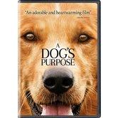 A Dog's Purpose, DVD