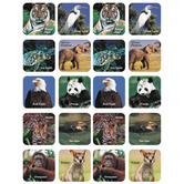 Eureka, Endangered Animals (photo) Stickers, 1 x 1 Inch, Multi-Colored, Pack of 120