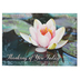 Warner Press, Quiet Reflections Thinking of You Boxed Cards, 12 Cards with Envelopes