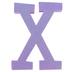 Glitter Foam Alphabet Letter Upper Case - X, 4 x 5.5 x .50 Inches, 1 Each, Assorted Colors